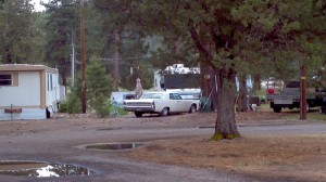 Lincoln Continental nestled among the pines near Chiloquin, Oregon.